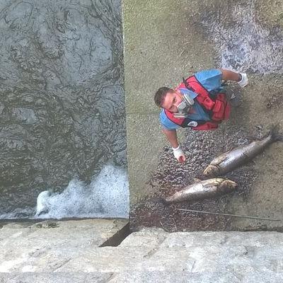 Wydobycie ryb 3